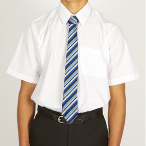 tde - Short Sleeve Easycare Polycotton Shirts - Twin Packaging - junior